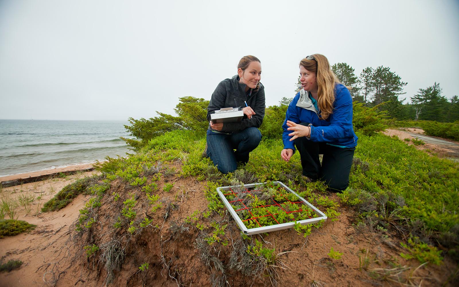 Stockton Island research