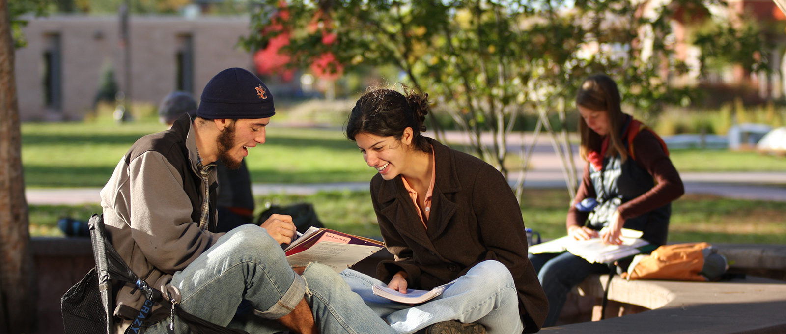 Students studying at fire ring