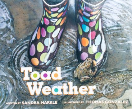 Toad Weather book cover