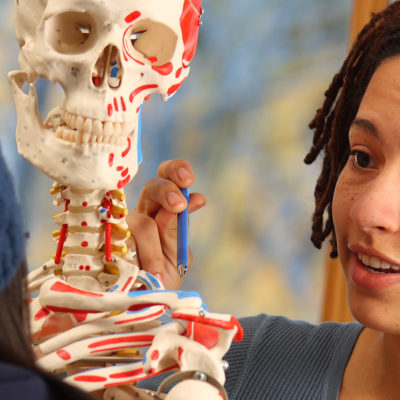 Student studying the skeleton
