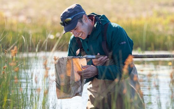 Research in lake