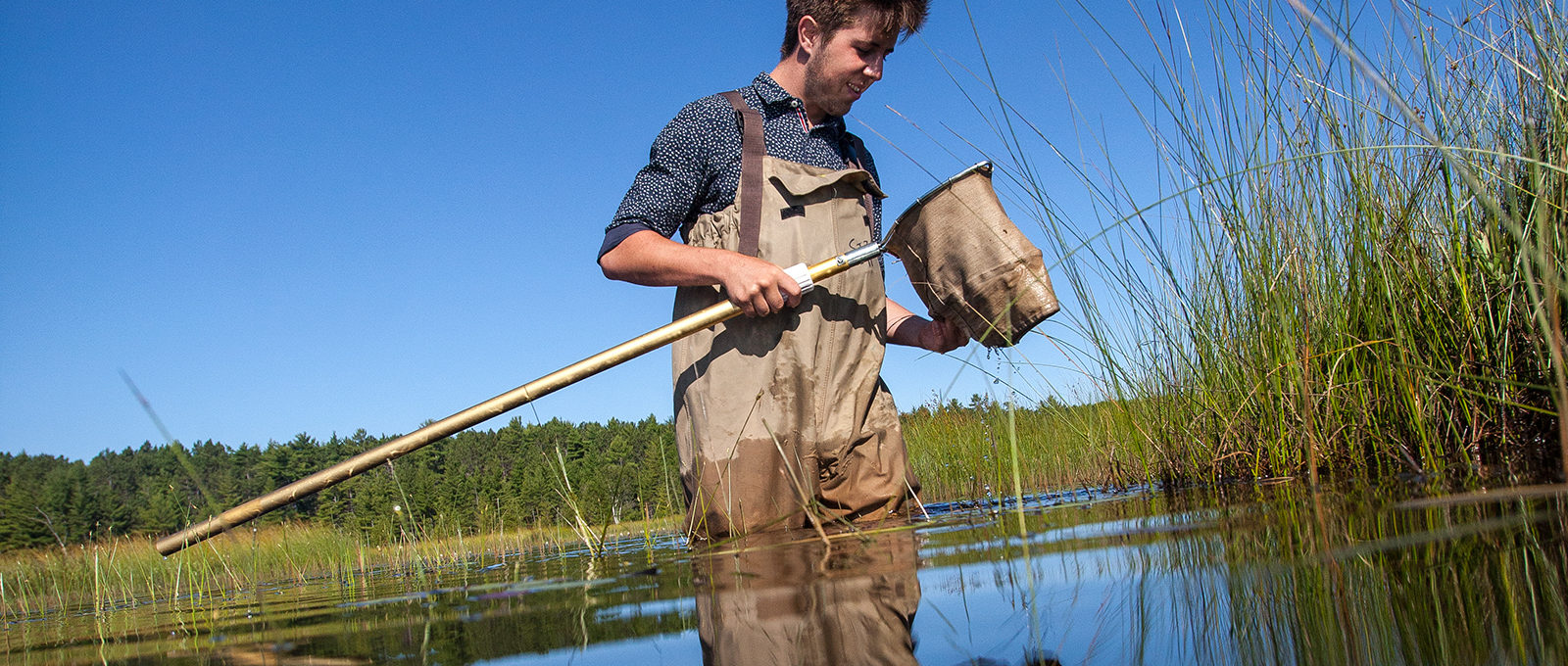 Student netting fish in Lake Superior