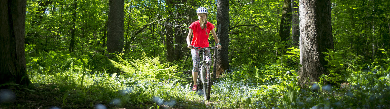 Northland College student bikes through the woods.