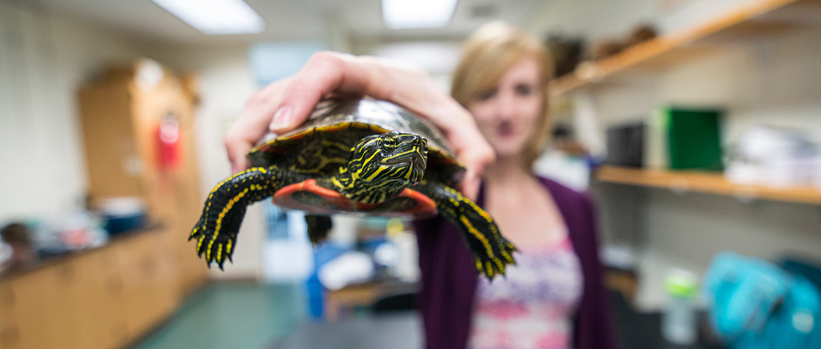 Student holding turtle