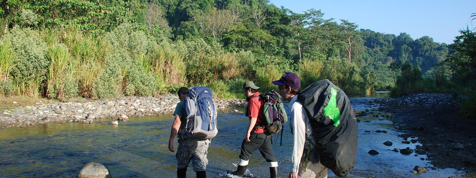 Three researchers walking through stream