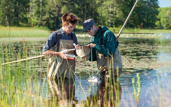 Student and professor in wetland