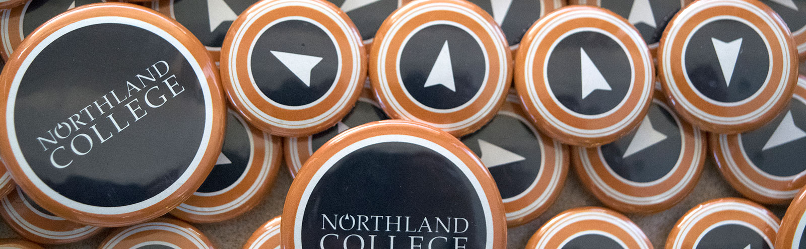 Northland College buttons