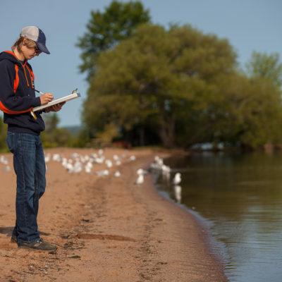 Northland College student surveys beach