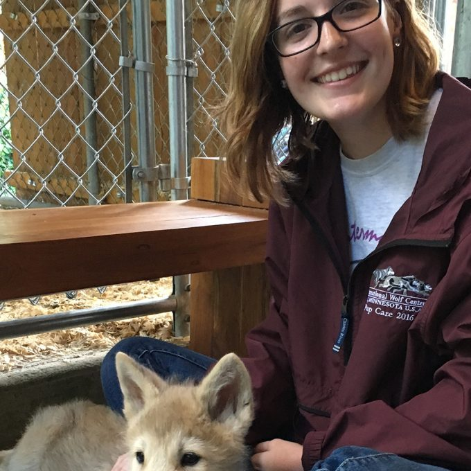 Northland College student and wolf pup
