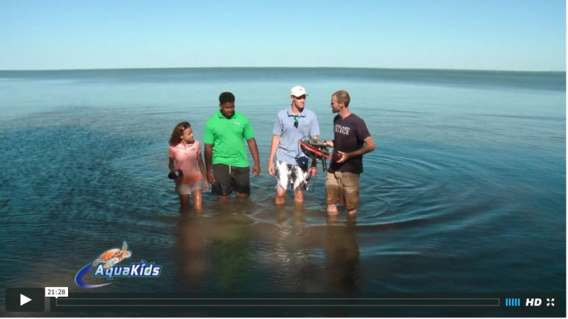 Four people standing in the water with research equipment