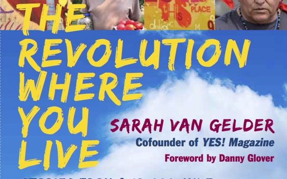 Book cover for The Revolution Where You Live