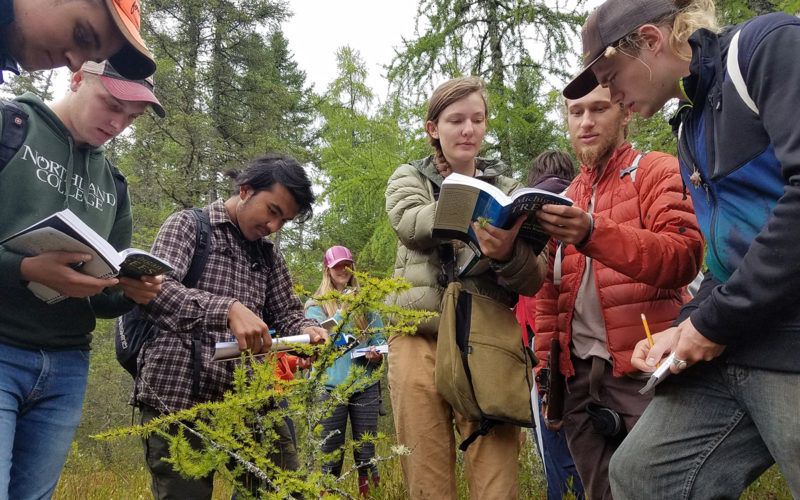 students learning about botany outside