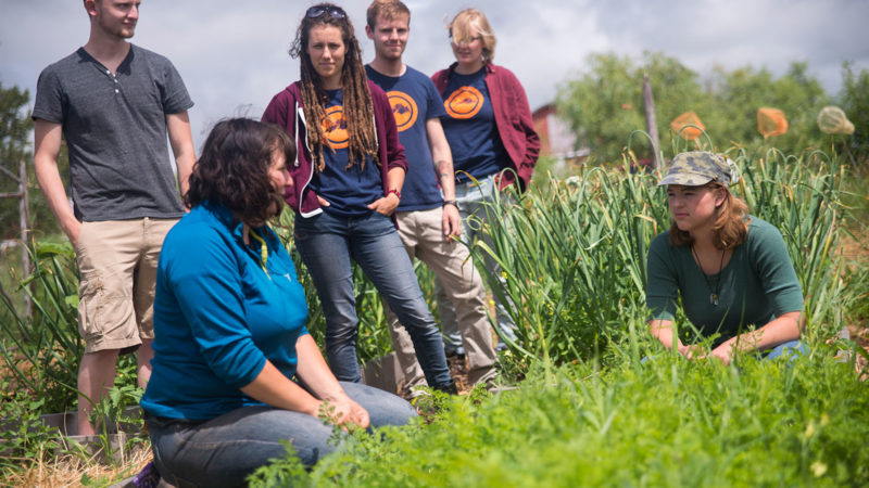 Northland College Students, on-farm learning.
