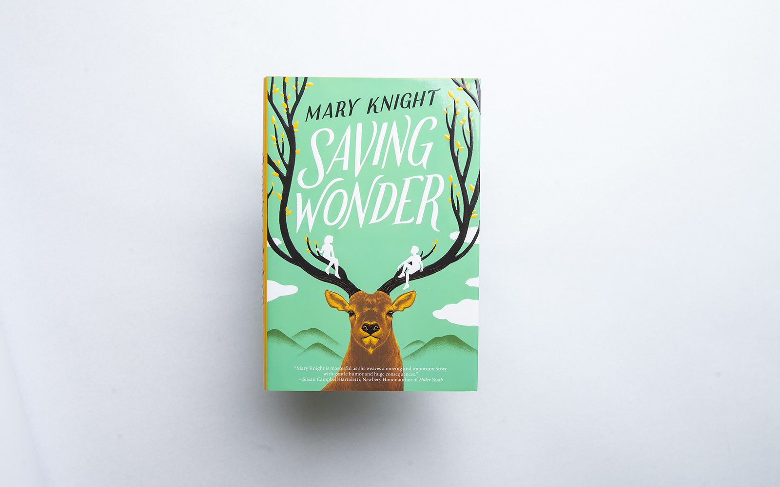 SONWA book Saving Wonder