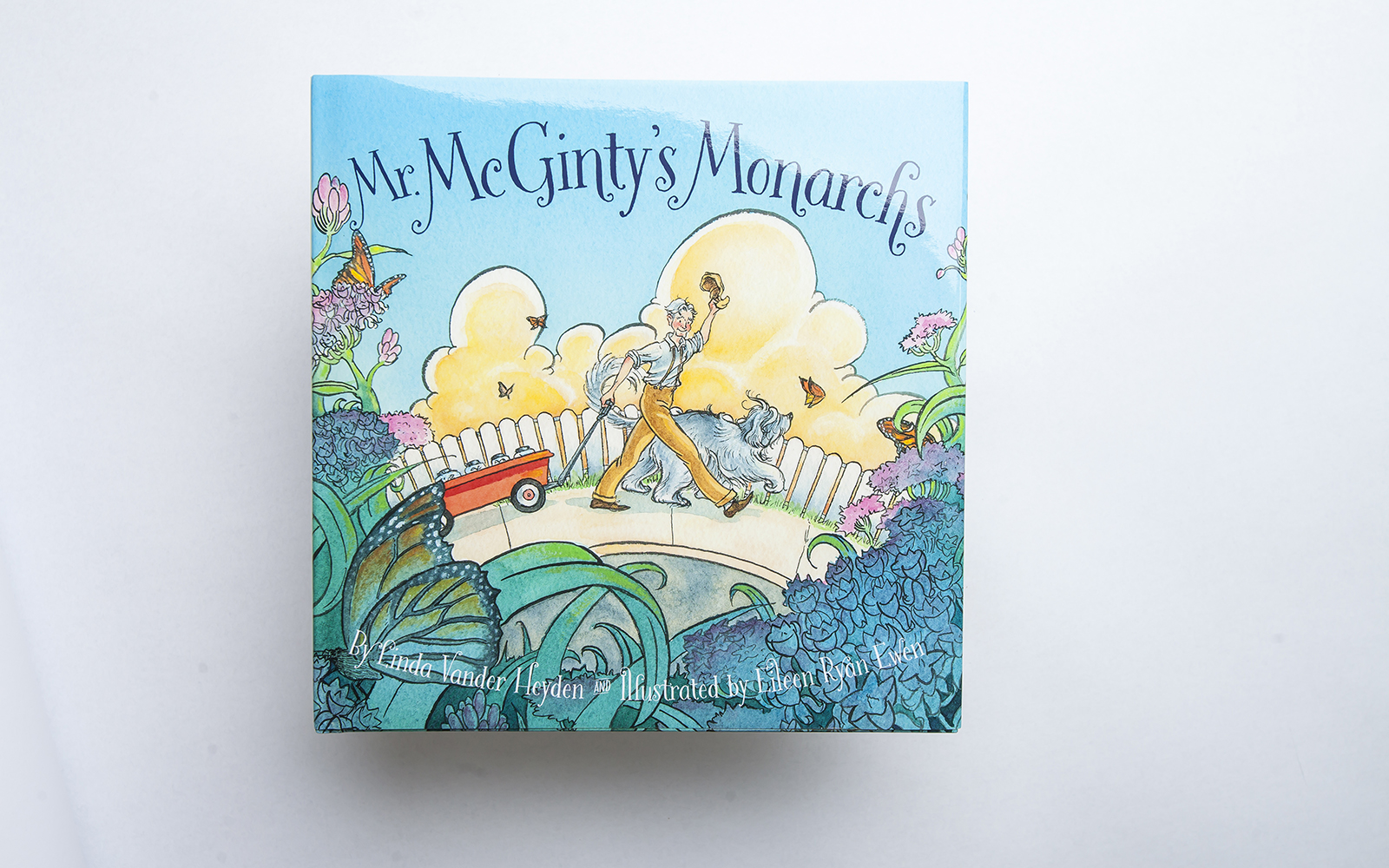 SONWA book Mr. McGinty's Monarchs