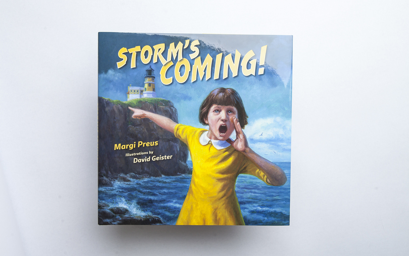 SONWA book Storm's Coming