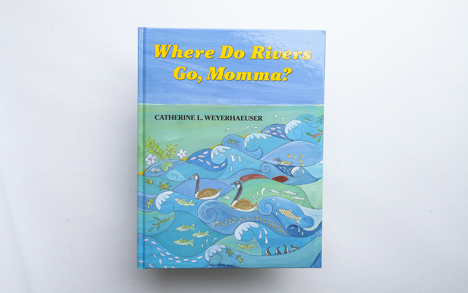 SONWA book Where Do Rivers Go?