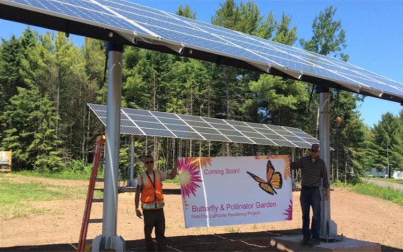 Great lakes Initiative Madeline Island Butterfly & Pollinator Garden