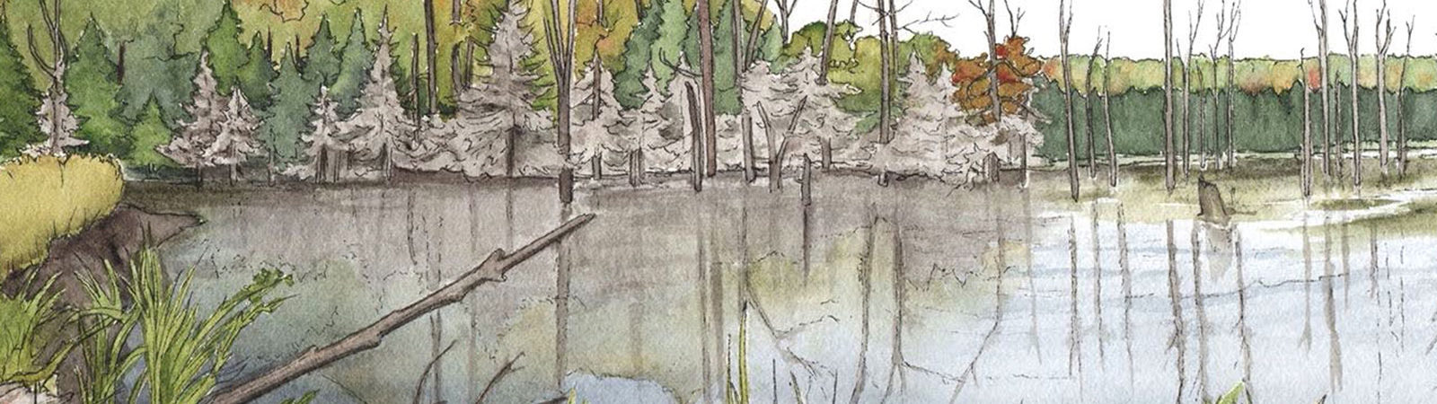 Janet Moore watercolor pond