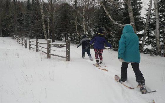 3 people snowshoeing