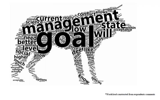 Wolf word cloud