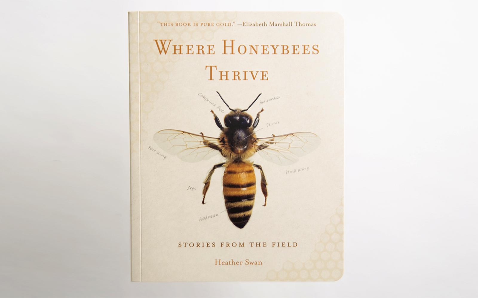 Where Honeybees Thrive Heather Swan 2017 SONWA winner - adult