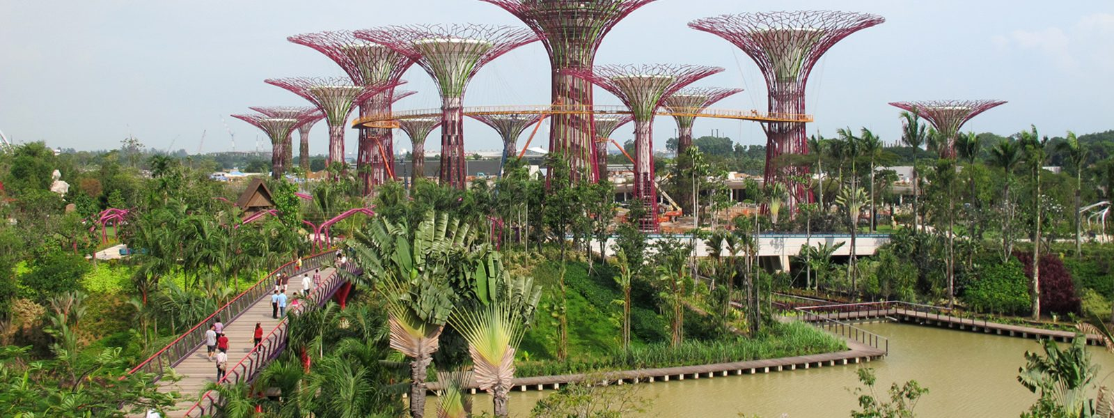 Gardens By The Bay In Singapore, An Example Of Sustainable Design By  Northland College Alum