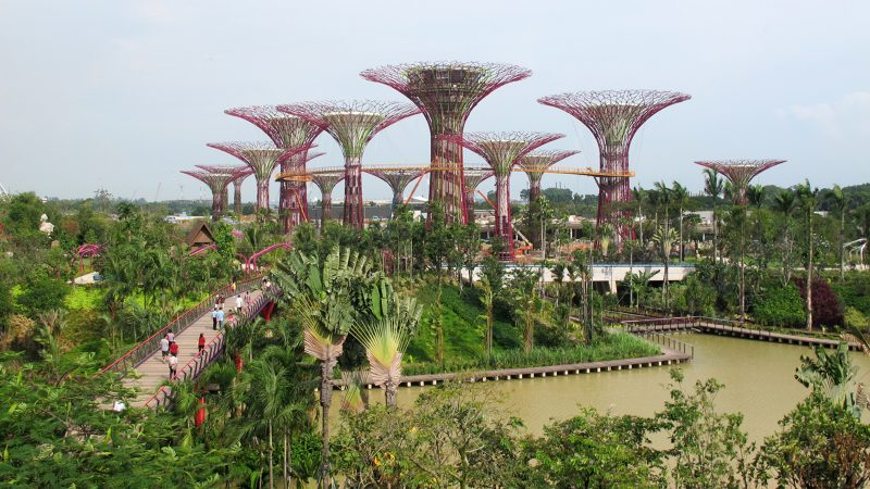 Gardens by the Bay in Singapore, an example of sustainable design by Northland College alum and trustee.
