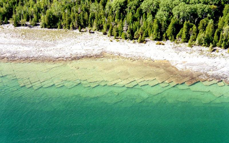 Learn about ellis island