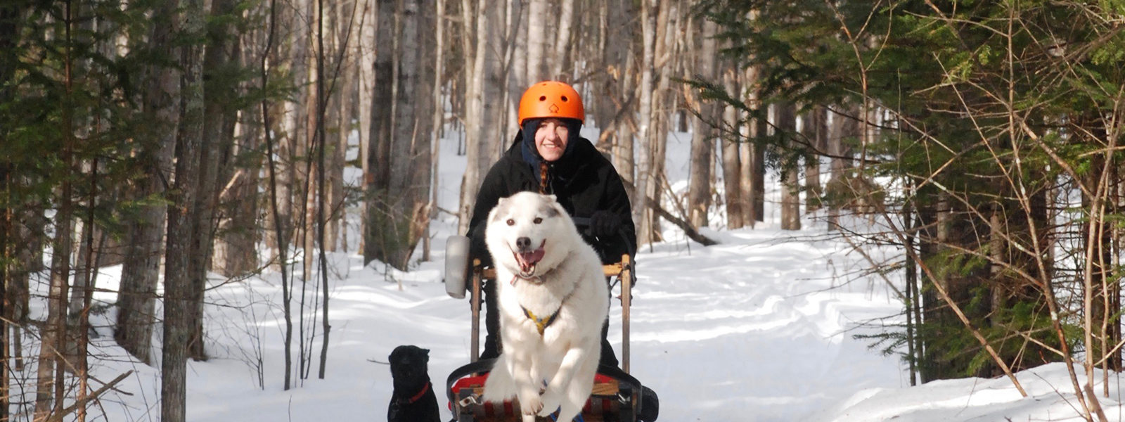 Northland College student Gretchen Hamernik-Winters dogsledding as part of internship.