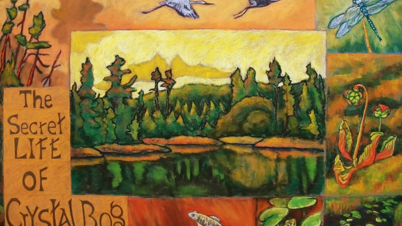 Northland College alum Terry Daulton's painting of Crystal Bog