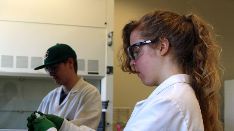 Northland College graduate Olivia Anderson runs tests at the Burke Center lab