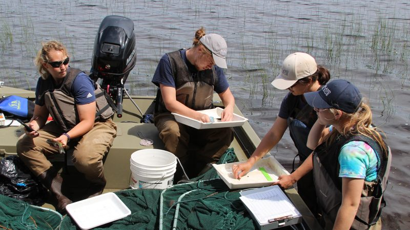 Four Northland College students sit in a boat with survey equipment