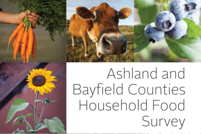 CRC Household Food Survey Report Thumbnail