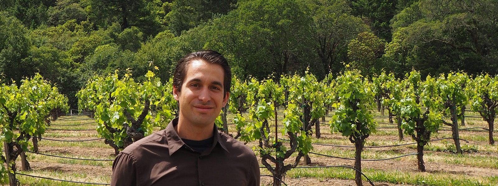 Northland College graduate Aaron Schreiber-Stainthorp standing in a California vineyard where he directs sustainability.
