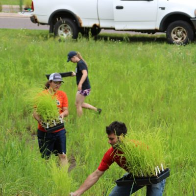 Northland College students and alum prepare rain garden