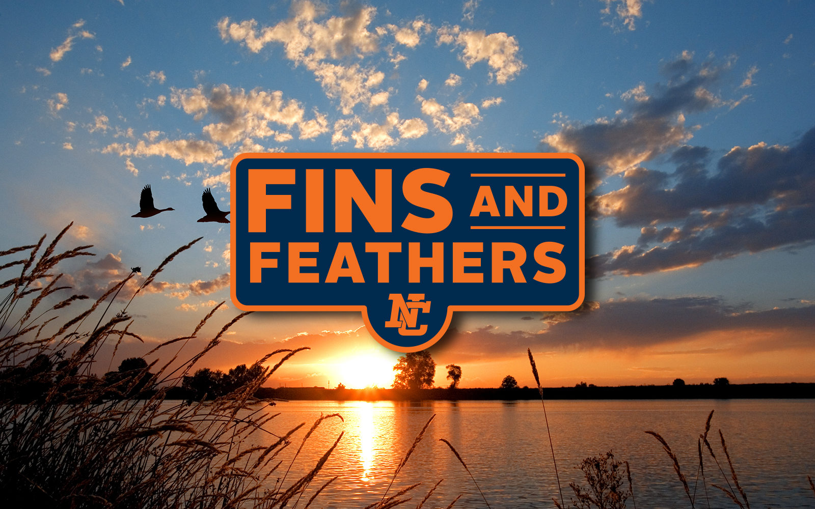 Fins and Feathers Fundraiser