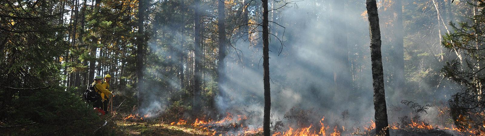 Controlled burn on Apostle Islands