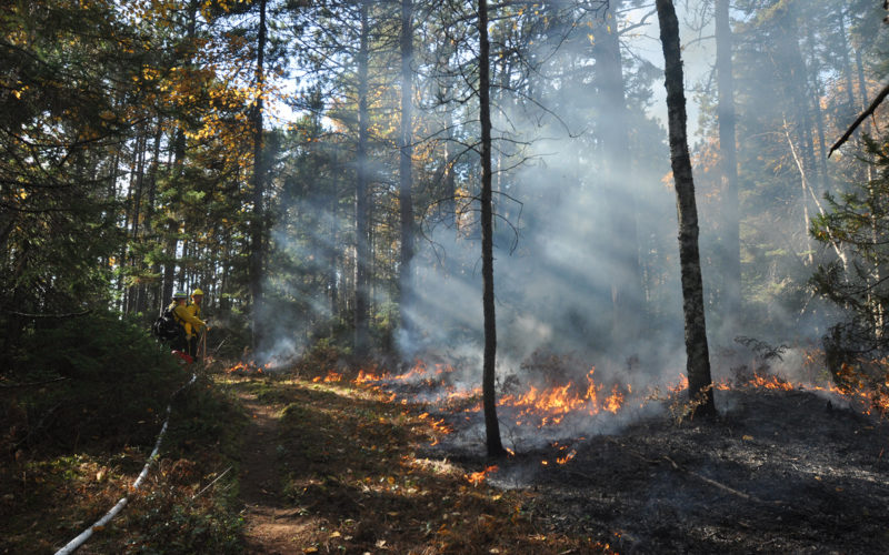 Controlled burn on Apostle Islands