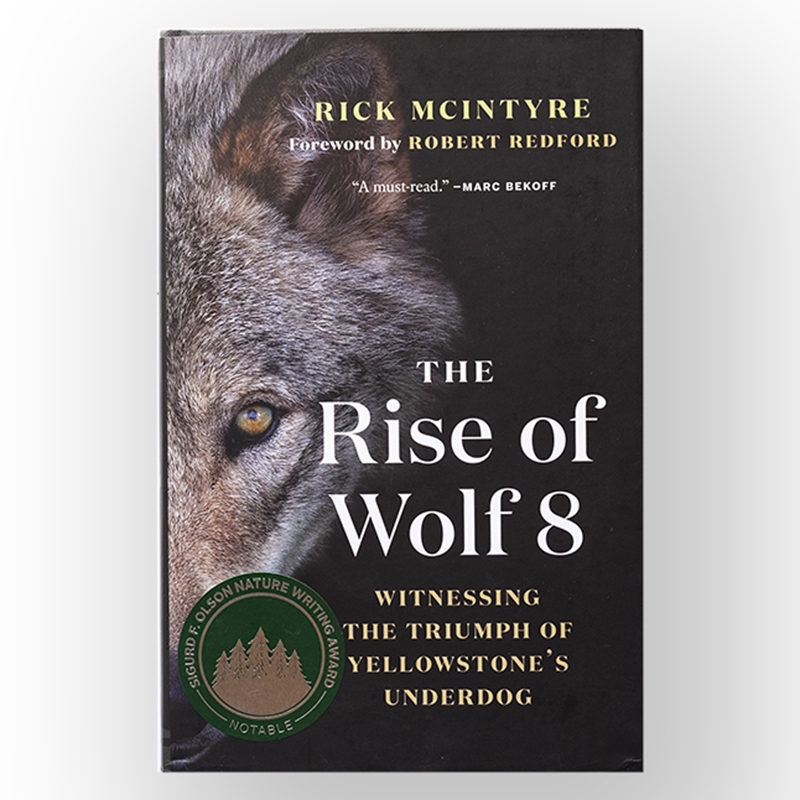 2019-SONWA Notable Award, The Rise of Wolf 8, Rick McIntyre