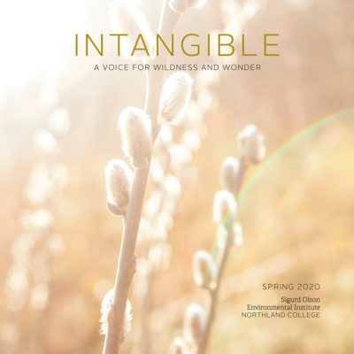 Cover of Intangible magazine