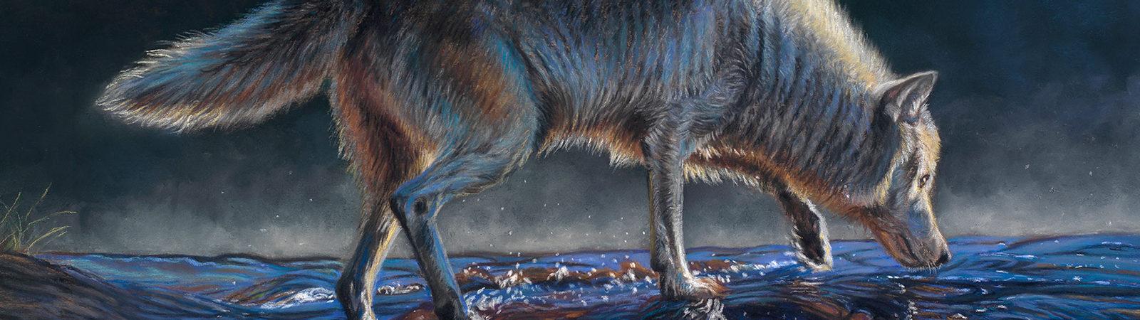 Wolf Awareness Week 2020 Winning Poster Art by Deborah LaFogg Docherty
