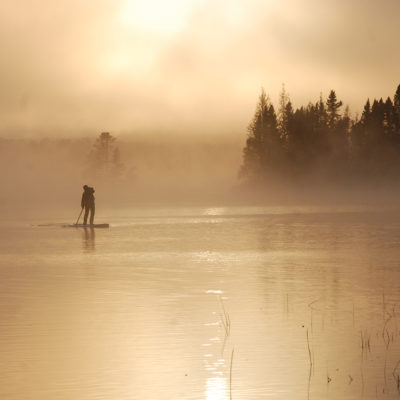 Northern Wisconsin Bark Bay Slough