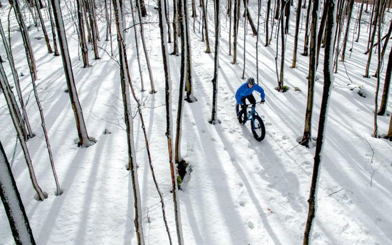 Fatbiking in the winter woods