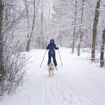 Northland College student tries skijoring.