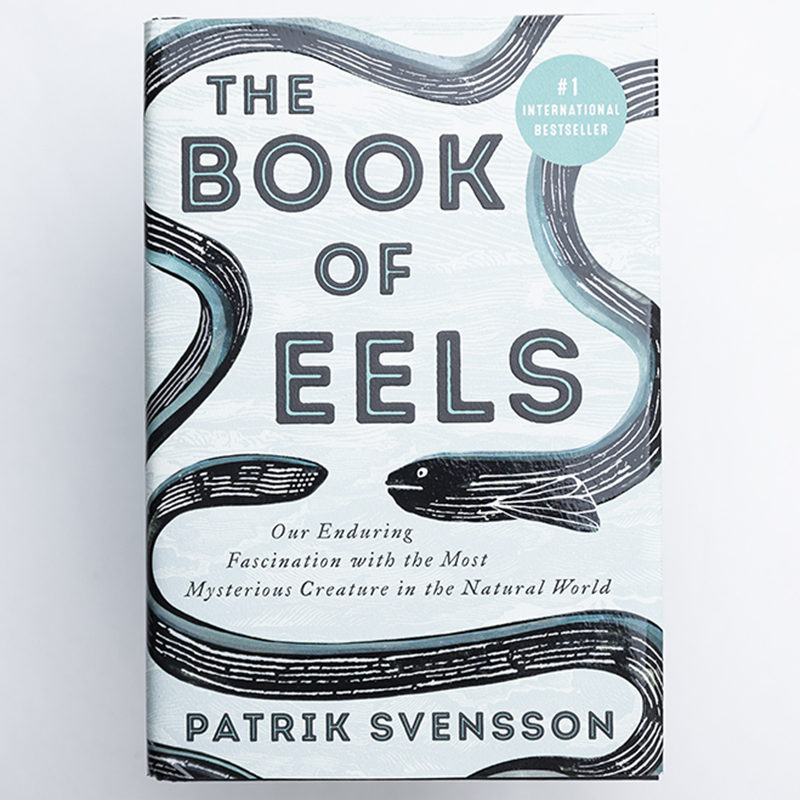 The book of Eels: Our Enduring Fascination with the Most Mysterious Creature in the Natural World, Patrik Svensson. Translated from Swedish by Agnes Broome