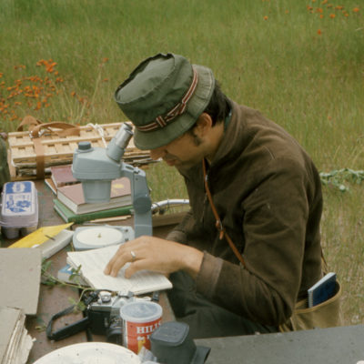 Professor Dick Verch recorded plant taxonomy samples on Stockton Island in the early 1970s.