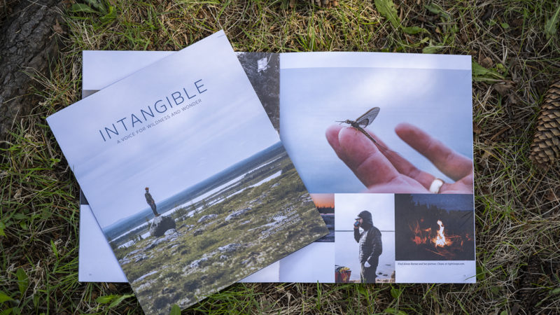 Intangible spring cover